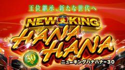 【ハナビ・ニューキングハナハナ】やっぱりAタイプはおもしろい!